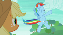 Rainbow Dash striking another pose S8E9