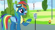 S07E07 Przeprosiny Rainbow Dash