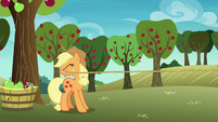 Applejack catches Rainbow Dash off-screen S8E5