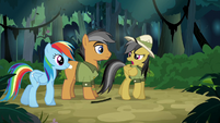 Daring Do --who are you again--- S6E13