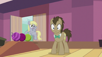 "Derpy ""I'll use them for the wedding!"" S5E9"