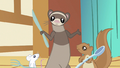 Ferret eh why not S3E13.png