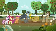 Gabby I just stopped to help this pony S6E19
