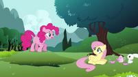 Pinkie Pie finding Fluttershy S3E3