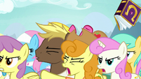 Ponies continue arguing over each other S7E14