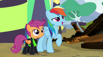 "Rainbow ""wouldn't have it any other way!"" S8E20"