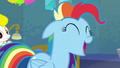 "Rainbow Dash ""all the time!"" S6E7.png"