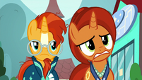 Stellar Flare nudges her head toward Sunburst S8E8