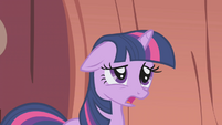 "Twilight ""Fluttershy, not you too!"" S1E03"