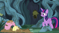 Twilight watches Fluttershy dig a hole S7E20