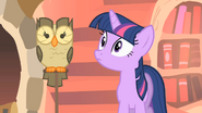 640px-Twilight staring intently at Owlowiscious S1E24