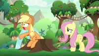 Applejack -don't any o' y'all talk-!- S8E23