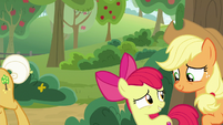 Applejack and Apple Bloom look relieved S9E10