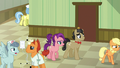 Applejack leads Filthy and Spoiled to Granny's room S6E23.png