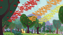 Applejack wakes up fruit bats S03E08