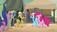 Daring Do thanking Rainbow Dash and Pinkie Pie S7E18