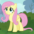 Fluttershy ID S4E16