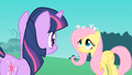 Fluttershy Mice S1E26.png