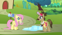 Globe Trotter asking Fluttershy for directions S2E19