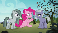 "Pinkie Pie ""what am I missing?"" S8E3"