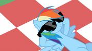 Rainbow Dash mit Sonnenbrille S2E03
