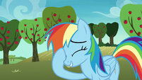 Rainbow Dash skeptical of AJ's request S8E5