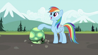 Rainbow Dash with Tank 2 S2E07