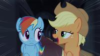 Rainbow e Applejack ' Somente a pônei mais ousada' TS4E03