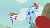 Rainbow passes the ball to Applejack S6E18
