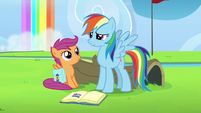 Rainbow resolves to fix her mistake S7E7