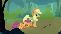 Scootaloo and Applejack walking together S3E06