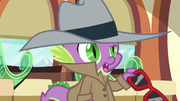 Spike --last time we came to the Crystal Empire-- S6E16