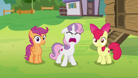 Sweetie Belle shouting at Rumble S7E21