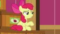 """Apple Bloom """"now that I'm gettin' older"""" S6E23.png"""