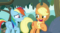 Applejack -up to you, Rainbow Dash- S8E9