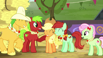Applejack and relatives feeling proud S5E6