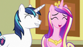 Cadance and Shining Armor laughing together S7E3.png