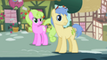 Daisy and Goldengrape notice something S2E8.png