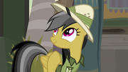 Daring Do thinking about what she learned S7E18