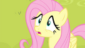 Fluttershy 'Why not' S4E14.png
