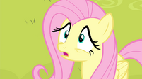 Fluttershy 'Why not' S4E14