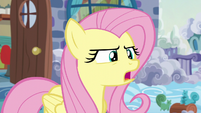 Fluttershy --you should move out-- S6E11