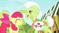Granny Smith pats Apple Bloom S4E17