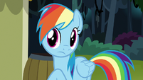 Rainbow Dash listening to Pinkie Pie S7E18