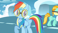 Rainbow Dash looking over shoulder S3E7