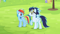 Rainbow and Soarin on the ground S4E10.png