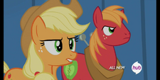 S4E20 Applejack i Big Macintosh