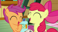Scootaloo and Apple Bloom laugh at Sweetie S9E22