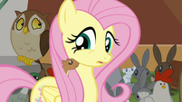 Squirrel in Fluttershy's mane S4E01