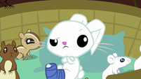 Angel Bunny listening to Fluttershy S7E5